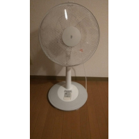 Fans 500¥ and 600¥, botn for 1000¥